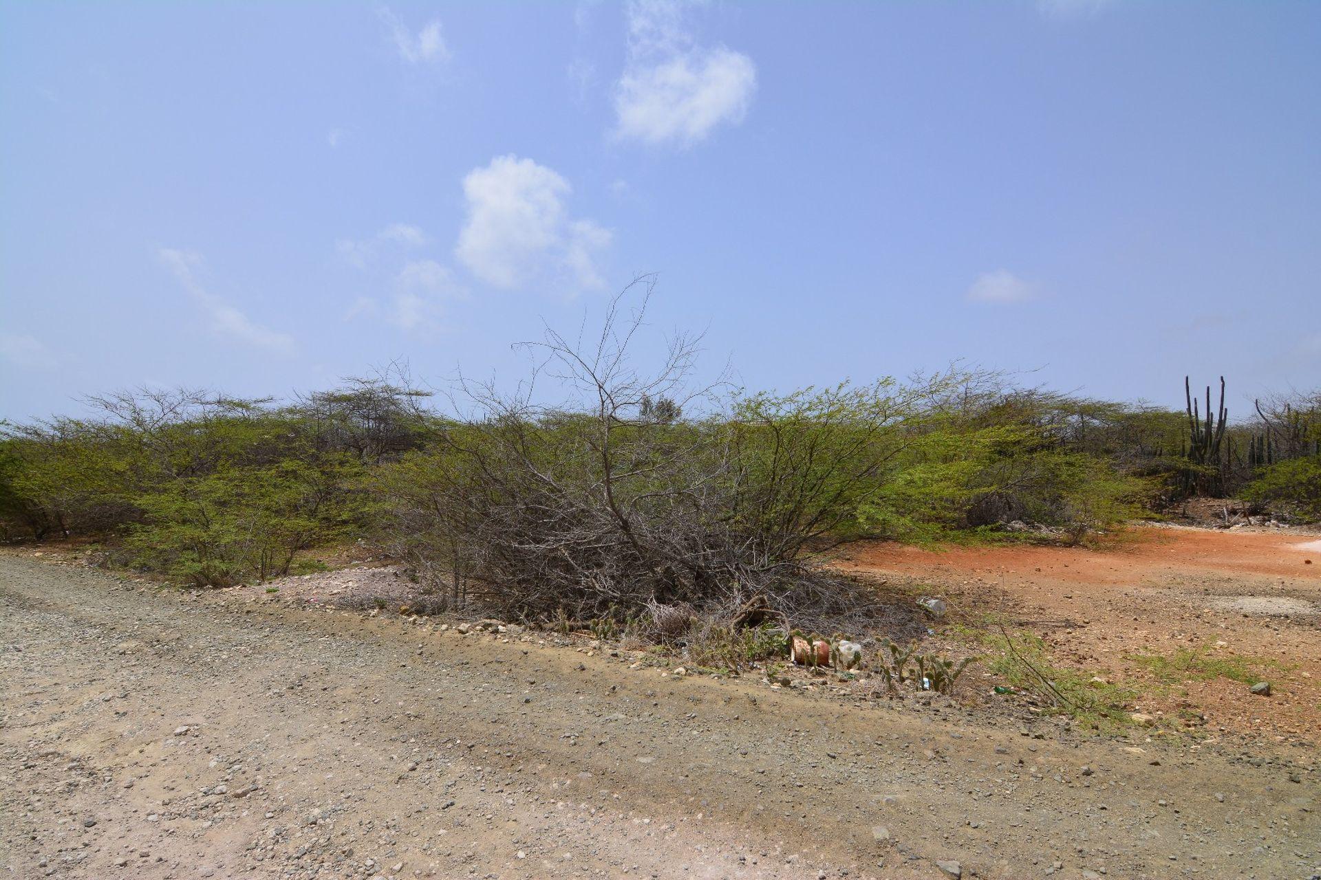 Bouwkavel eigen grond te koop op eiland bonaire caribisch nederland - Een stuk grond ontwikkelen ...